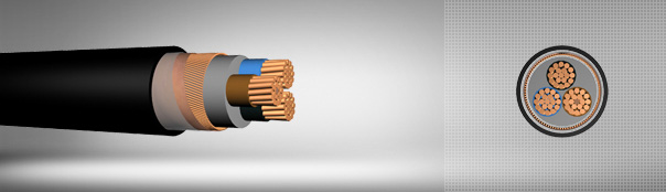0.6/1 kV PVC Insulated, Concentric Conductor Screen, Multi-Core Cables With Copper Conductor