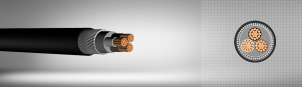 0.6/1 kV XLPE Insulated, Round Steel Wire Armoured, Multi-Core Cables With Copper Conductor