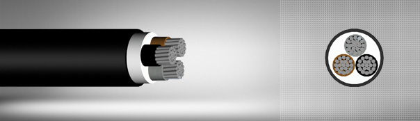 0.6/1 kV PVC Insulated, Multi-Core Cables With Aluminium Conductor