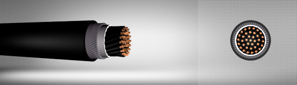 0.6/1 kV PVC Insulated, Round Steel Wire Armoured, Control Cables With Copper Conductor